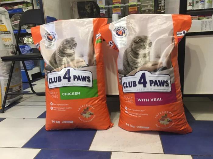 Як обрати корм для кота